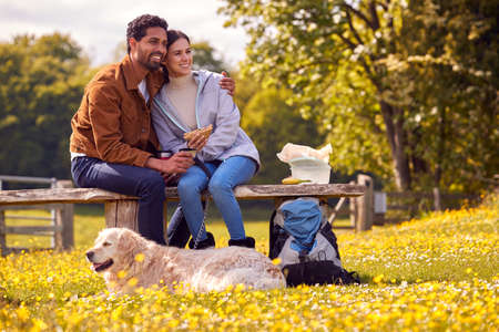 Couple With Pet Golden Retriever Dog On Walk In Countryside Sit On Bench And Enjoy Picnic Together