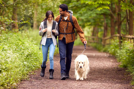 Couple With Pet Golden Retriever Dog Hiking Along Path Through Trees In Countryside Standard-Bild