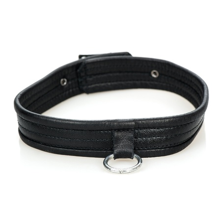 masters of rock: Leather collar with a metal ring - typical fetish wear