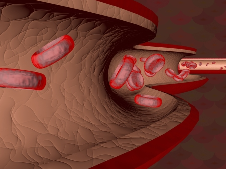 Red blood cells flowing through