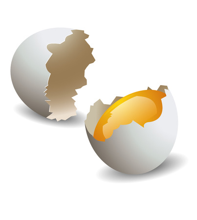 egg shape: Realistic egg shell broken.vector illustration