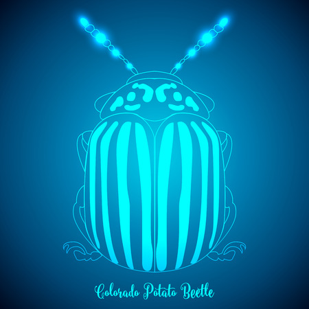 brindled: Colorado Potato Beetle and abstract backgrounds blue lights.vector illustration.