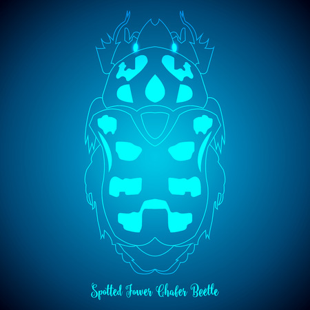 brindled: Spotted Flower Chafer Beetle and abstract backgrounds blue lights.vector illustration. Illustration