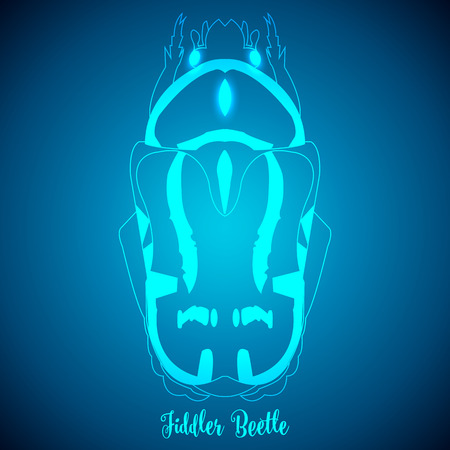brindled: Fiddler Beetle and abstract backgrounds blue lights.vector illustration.