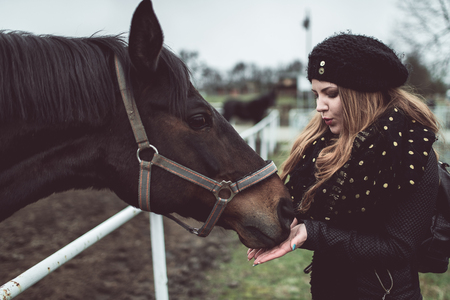 Beautiful blonde girl feeds from a hand and big brown horse racial, wich stand behind the fence Lizenzfreie Bilder