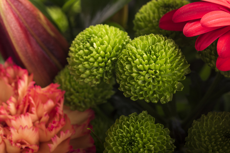 Beautiful bouquet of flowers detail Stock Photo