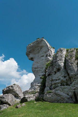 Limestone rocks at the Ogrodzieniec castle at sunny summer day, Poland