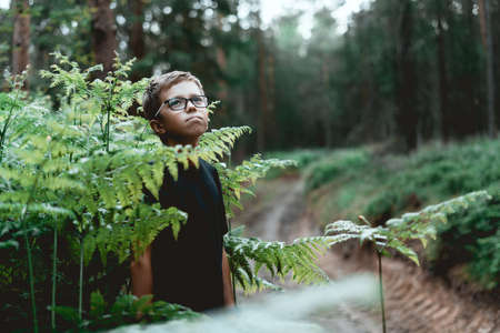 Portrait of a thoughtful young teenager boy In the forest.