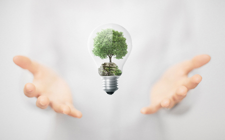 Tree in a lightbulb, environment, alternative energy