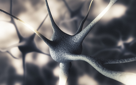 Human brain neurons, 3d render illustration
