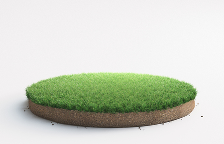 Peace of green grass, 3d render illustration