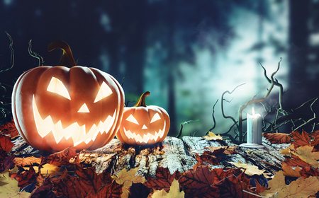 Halloween pumpkins in a wood with trees, 3d render illustration
