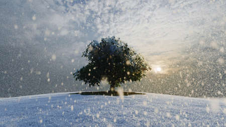 Alone frozen tree in snowy field and cloudy sky. 3d rendering