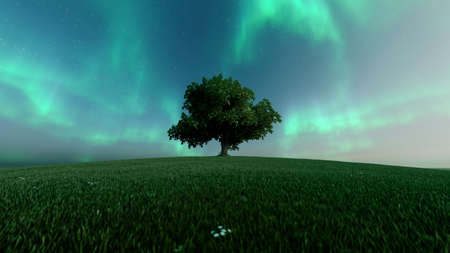 Green northern lights and silhouette of a tree. Starry sky and polar lights. Night landscape with bright aurora borealis, tree, lake. 3d rendering Stock fotó
