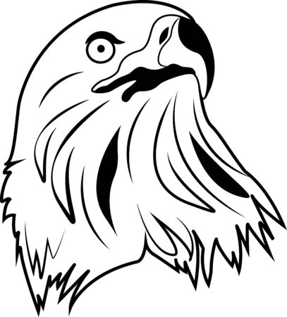 vector black and white illustration of an eagle on a white background