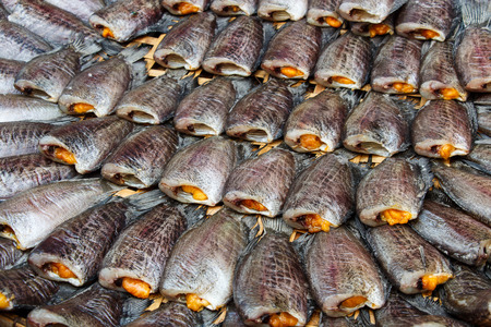 pectoralis: Fishes meat Trichogaster pectoralis  arrange on rattan in market