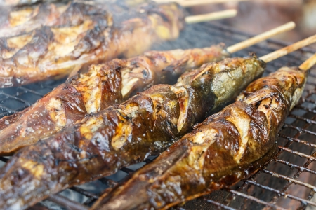 grilled fish: catfishs were roasted on grill  native food in Thailand  Stock Photo
