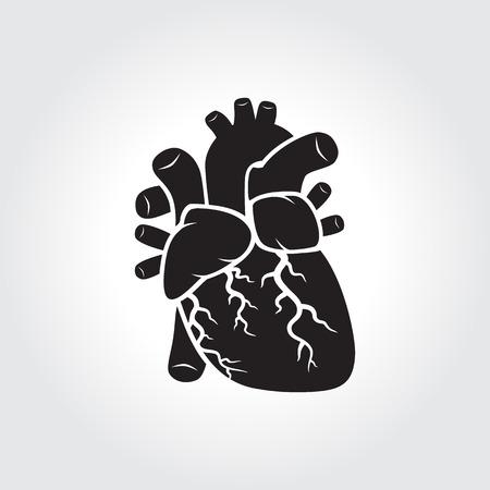 cardiopatia: icono de la anatom�a del coraz�n humano s