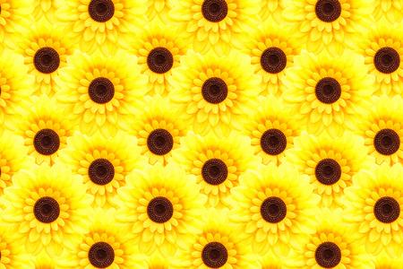 Artificial sunflower background (Helianthus annuus) photo