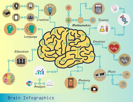 Brain Infographics (Brain function : Creative,Mathematics,Science,Emotion,Music,Memory,Analysis,Education,Language,etc.)