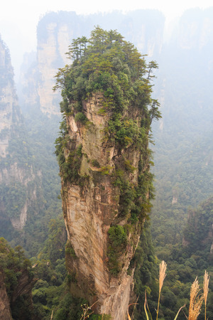 hallelujah: Hallelujah mountain in Zhangjiajie national park ( tian zhi shan ) ( Tianzi Mountain Nature Reserve ) and fog , China