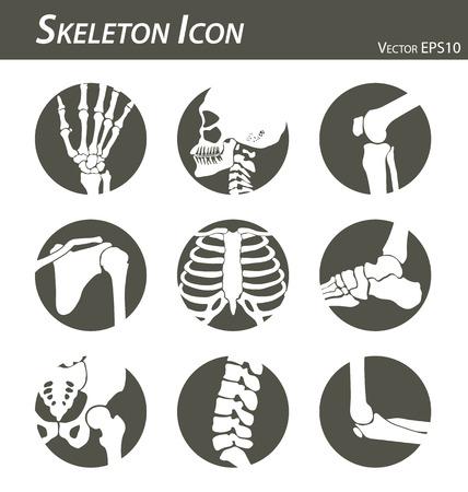 Ikona Skeleton Ilustracje wektorowe