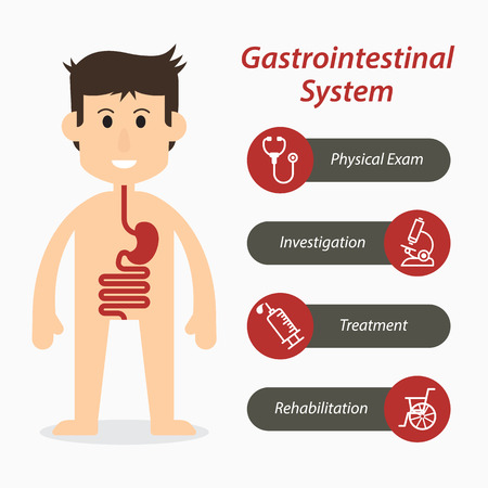 bowel cancer: Gastrointestinal system and medical line icon Illustration