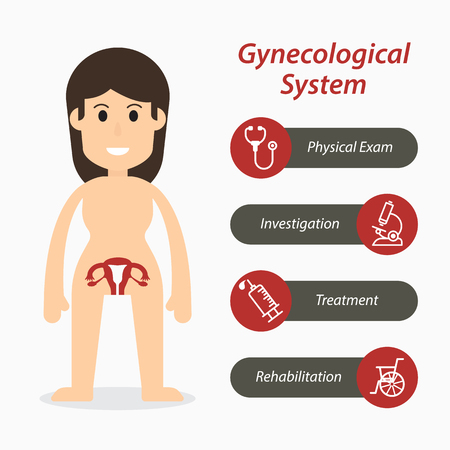 Gynecological system and medical line icon ( flat design ) Illustration