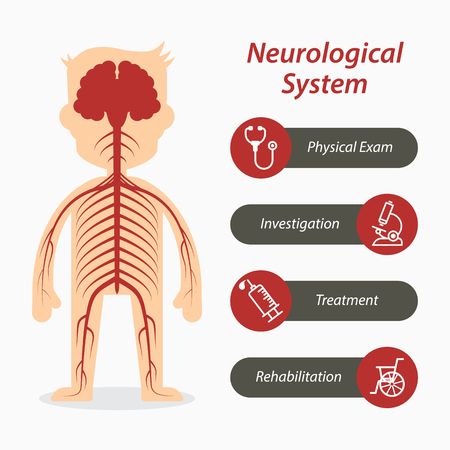 neuropathy: Neurological system and medical line icon Illustration