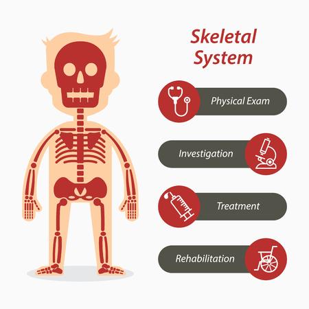 sistema esquelético y el icono de línea médica