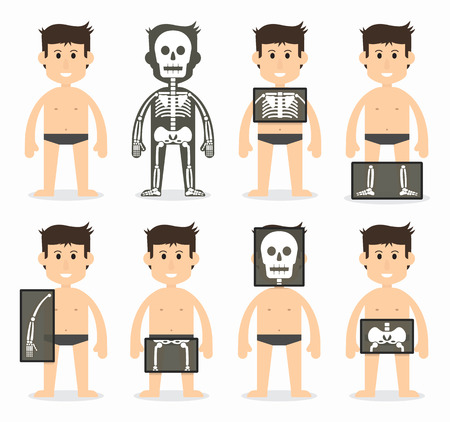 whole body: Human and total bone scan(skull , neck , shoulder , scapula , arm , elbow , forearm , wrist , hand , finger , thorax , rib , spine , pelvic , hip , thigh , knee , leg , ankle ,foot , toe ) flat design
