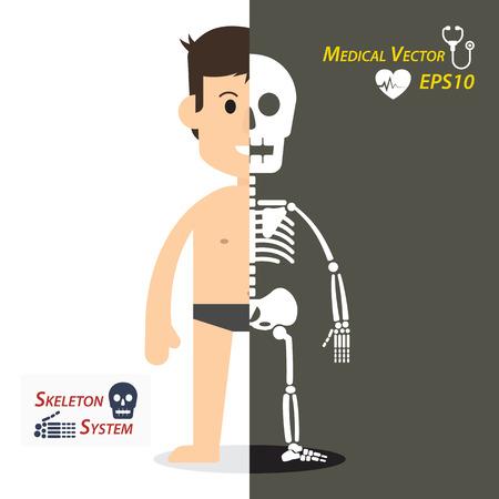 Humana y el esqueleto (diseño plano)