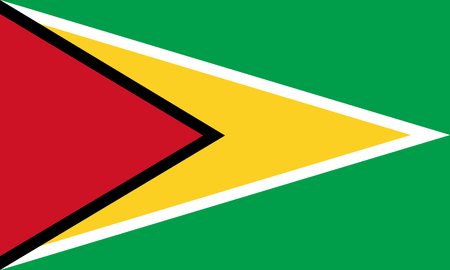 georgetown: Official vector flag of Guyana . Co-operative Republic of Guyana . Illustration