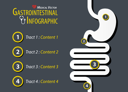 Gastrointestinal Infographic . Flat design . Illustration