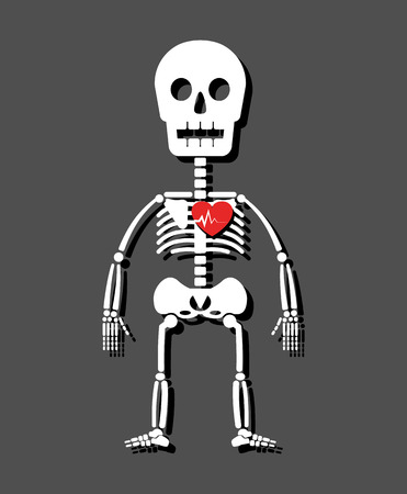 Human skeleton and heart . Cartoon style . Иллюстрация