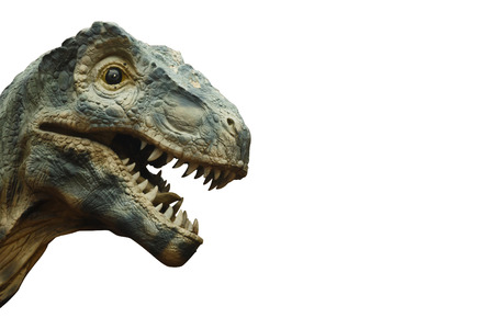 Tyrannosaurus rex and blank area at right side . Isolated .