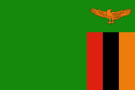 Official vector flag of Zambia .