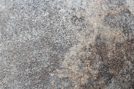 Grunge cement texture background . Gray color . Abstract concept . Stock Photo