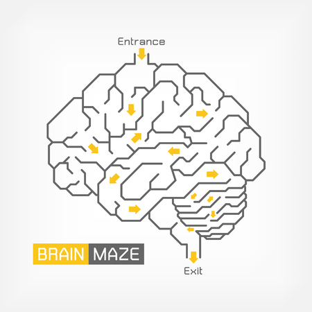 Brain maze . Creative idea concept . Outline of cerebrum cerebellum and brainstem . Flat design .