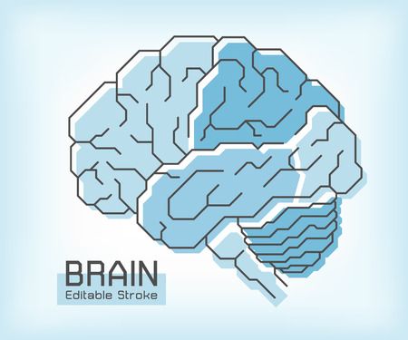 Brain anatomy and outline stroke . Frontal Parietal Temporal Occipital lobe Cerebellum and Brainstem . Medical concept . Editable stroke