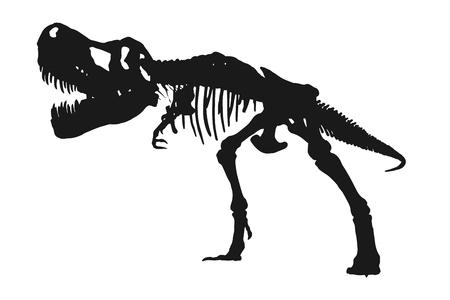 Tyrannosaurus Rex skeleton silhouette on isolated white background . Vector .