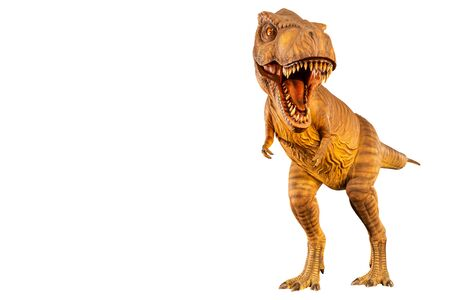Tyrannosaurus rex ( T-rex ) is walking and open mouth and copy space on left site . Front view . Black isolated background . Dinosaur in jurassic period