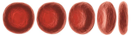 Red blood cells with different view . High detailed surface texture . White isolated background . 3D rendering . 免版税图像