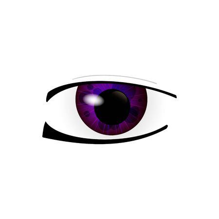 Eye. Human eyes closeup. Beautiful big eyes. Illustration