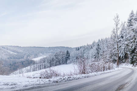 snow-covered street and a view of the forest Фото со стока