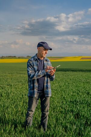 Modern Farmer Researcher Using Digital Tablet at Agricultural Field. Фото со стока