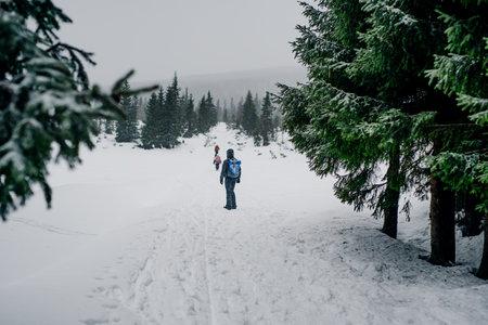 Hiker Walking in Mountains in Winter