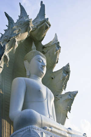 Grand Bouddha blanc.