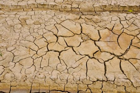 Close up and detail of earth cracked  Stock Photo