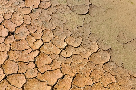 Close up and detail of earth cracked  into the dry season Stock Photo